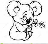 Koala Coloring Bear Eucalyptus Leaves Cartoon Drawing Animal Koalas Character Colouring Printable Drawings Animals Line Illustration Dreamstime Getdrawings Clipartmag Adults sketch template