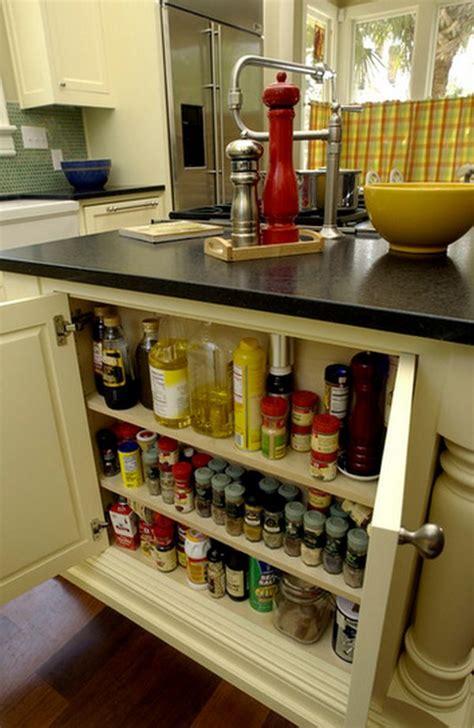 Pantry Cabinet Organization Ideas by 65 Ingenious Kitchen Organization Tips And Storage Ideas