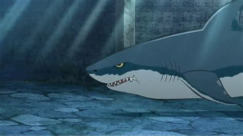 What Does Me Stand For by Image Megalodon Png Doraemon Wiki