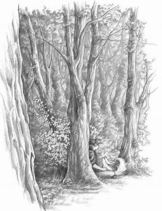 Forest Drawings Pencil Landscape Pencil Drawing Of A ...
