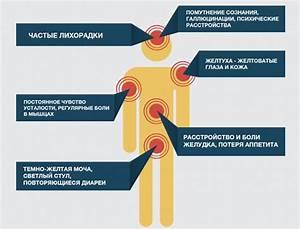 Желчевыводящие из печени препараты