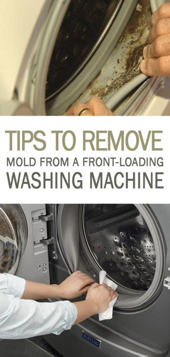 tips  remove mold   front loading washing machine