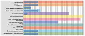 Media Organization Chart Gantt Chart Beyond Batten Disease Foundation