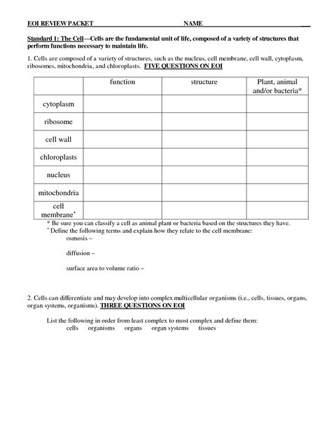14 Best Images Of Plant Classification Worksheet  Plant Tissue Worksheet Answers, Plant