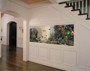 Fish Tank Under