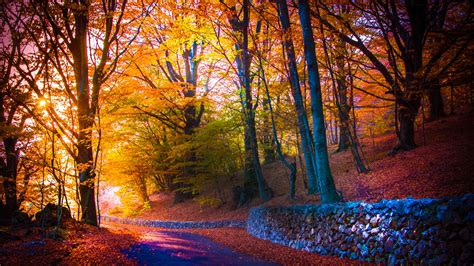 Autumn Wallpapers For Mac by Beautiful Autumn Mac Wallpaper Free Mac