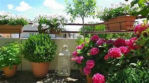balcon amenagement decoration balcon fleuri en ville With amenagement petit jardin avec terrasse 2 petit jardin et ses fruits jardin potager jardineries