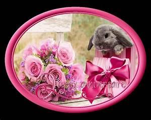 tres jolie carte avec des fleurs et un cadeau pour mes 16 With chambre bébé design avec fleurs pour un anniversaire