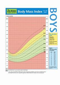 Height Percentile Chart Bmi Chart For Boys 2 To 20 Years Printable Pdf Download