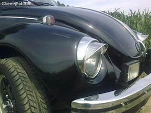Volkswagen Beetle Eyebrow Stainless  Per Pair  Number 779