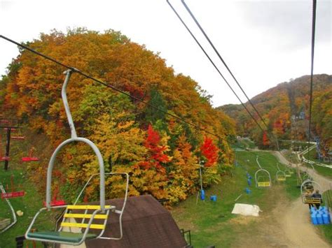 ober gatlinburg scenic chairlift view from scenic chairlift picture of ober gatlinburg