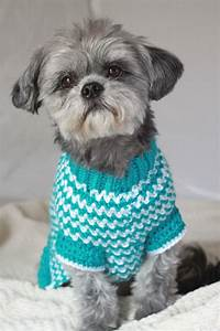 De 20+ bedste idéer inden for Crochet dog sweater på Pinterest
