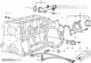 30 Bmw N62 Engine Diagram