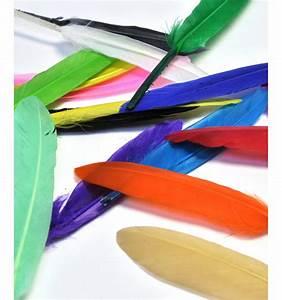 Edredon Plume D Oie : plume d 39 oie 15cm rose p le arrow workshop ~ Nature-et-papiers.com Idées de Décoration