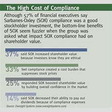 Financial Executives Call Sarbanesoxley Compliance A