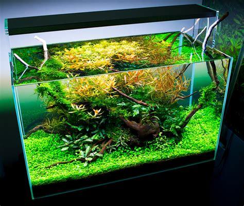 Twinstar Aquarium Led Light 600e 600es 60cm Full Spectrum