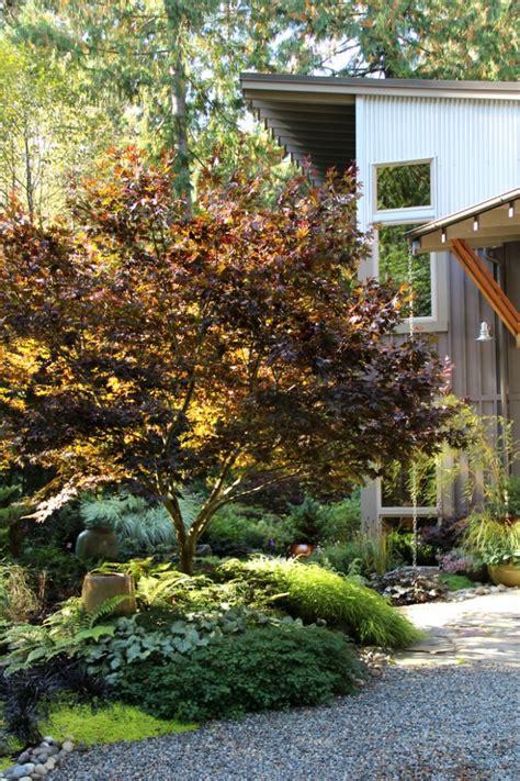 Garten Gestalten Baum by Vorgarten Gestalten 51 Ideen Zur Auswahl Der B 228 Ume