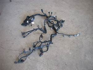 2007 Hyundai Accent Engine Wiring Harness 914001e462