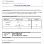 Microsoft Office Resume Templates 2010 by Resume Templates For Microsoft Word 2010 Free
