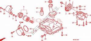 Oil Pan Oil Pump For Honda Cbf 1000 Abs 2009   Honda