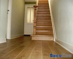 idees couleurs pour moquette escalier et hall d39entree With quelle couleur pour un escalier
