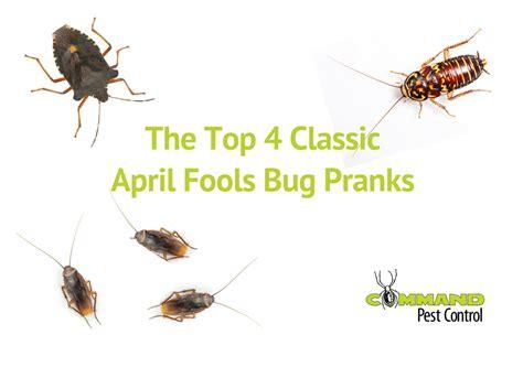 Commands Favorite April Fools Bug Pranks Command Pest