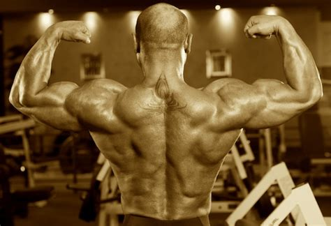 Lats: Friend or Foe? - Robertson Training Systems