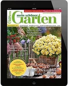 Shop Mein Schoener Garten De : mein sch ner garten mein sch ner garten epaper ~ Orissabook.com Haus und Dekorationen