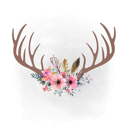 antlers and flowers watercolor png image within with decor 16 labarrigallena com