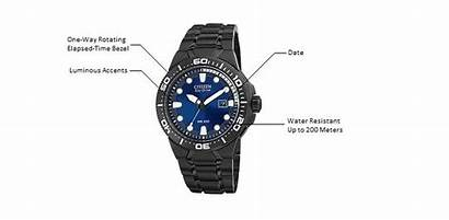 Citizen Scuba Drive Band Dive Eco Watches