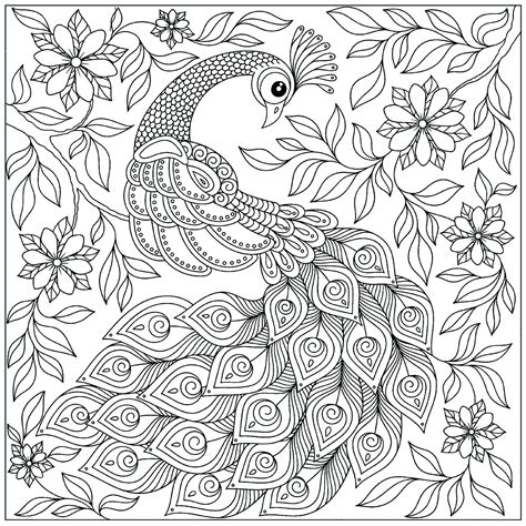 peacock coloring pages for adults peacock among the flowers peacocks coloring pages
