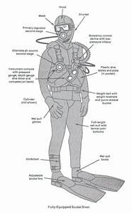Labeled Diagram Of The Aqua Lung : bolton area divers ltd scuba equipment ~ A.2002-acura-tl-radio.info Haus und Dekorationen