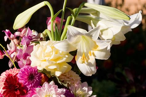 bouquet of flowers file bouquet of flowers apr07 jpg wikimedia commons