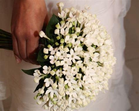 fiori d arancio wedding planner bouvardia bouquet sposa cerca con bouquet