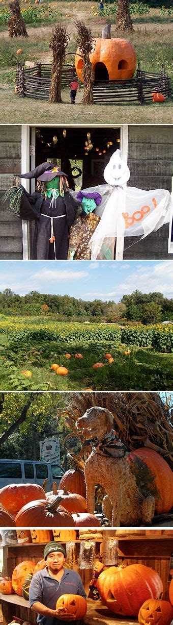 Summers Pumpkin Patch Frederick Md by 17 Best Images About Pumpkin Patches Maryland On