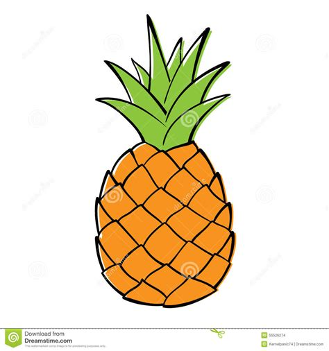 pineapple outline vector pineapple stock vector image 55526274