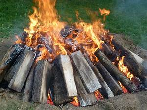 How, To, Remove, A, Tree, Stump, The, Easy, Way, Burn, It, Out