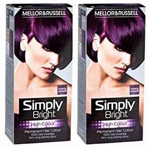 2 X Simply Bright Purple Passion High Colour Permanent