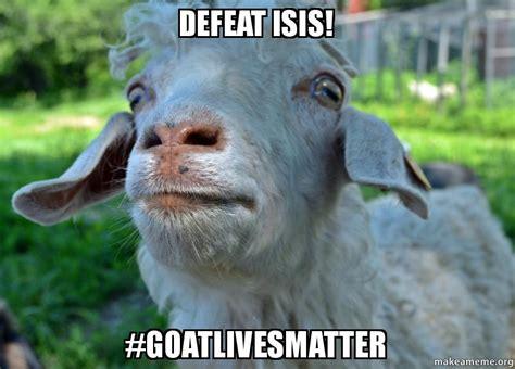 Isis Goat Memes - meme