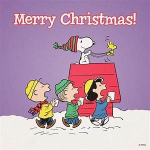 Merry Christmas! #ThePeanuts #Snoopy | Snoopy - The ...