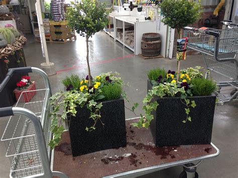 vaste planten voor bloembakken potplanten buiten schaduw