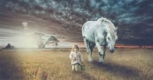 Horse Spirit Animal Meaning Symbolism Horsey Hooves