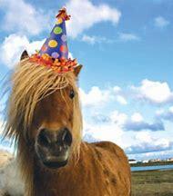 Happy Birthday Horse Party