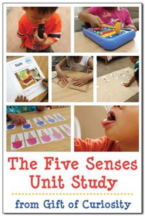 1000 ideas about five senses preschool on 865   e1c2e64ceac253712941f6cf61e31961