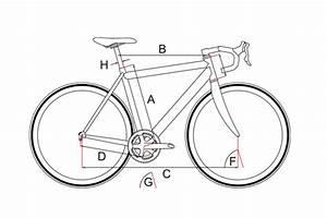 Rahmenhöhe Fahrrad Berechnen : die richtige rahmengr e berechnen rennrad florian ~ Themetempest.com Abrechnung
