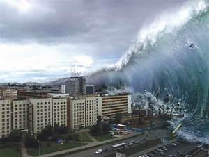 Disaster Focus