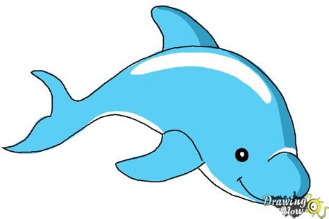 draw  dolphin drawingnow
