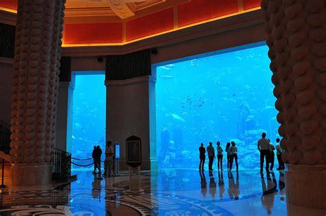atlantis hotel aquarium dubai wahre groessen das aquarium im atlantis hotel dubai bild foto o fey aus dubai