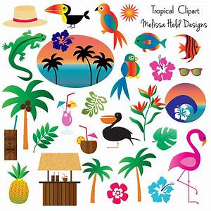 Tropical Clipart | Mygrafico