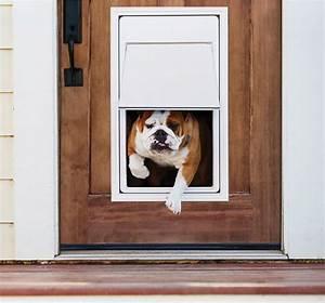 best electronic dog doors jul 2018 buyer39s guide With best dog door for security
